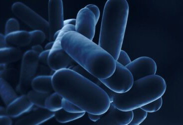 HSE's latest bulletin highlights the very real Legionella risks during the coronavirus pandemic
